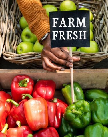 Farmers' Markets in Lancaster